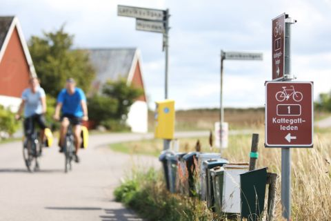 Cycling along the Kattegat route